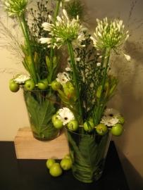 Witte bloemen in appelframe