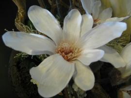 """Bloemstuk """" Magnolia """" € 60,-"""
