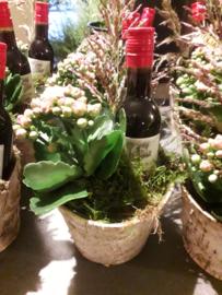 Flesje wijn met plantje vanaf € 5,-