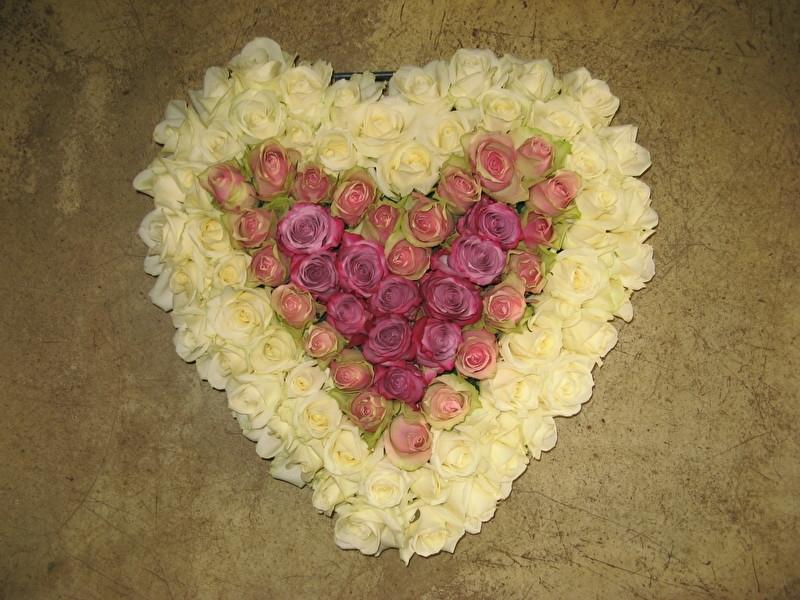 Hart van rozen vanaf € 75,-