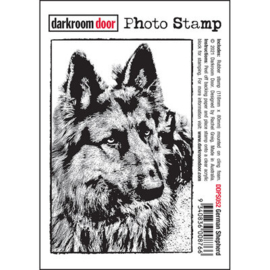 DarkroomDoor- Photo Stamp German Shepherd