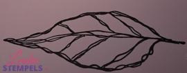 Magenta - Solo Leaf