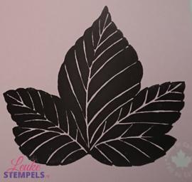 Magenta -  Leaf