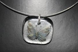 Blauw/grijze vlinder
