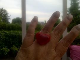 verzilverde ring met 2 versmolten hartjes