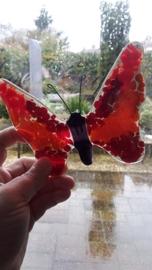 Rode vlinder