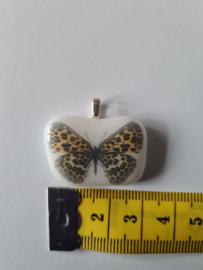 Gespikkelde vlinder