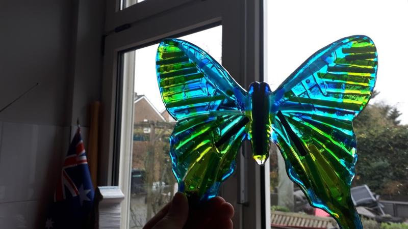 grote blauwe vlinder