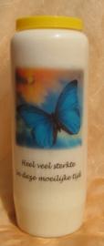Noveenkaars Vlinder