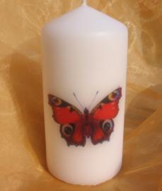 Vlinderkaars dagpauwoog S