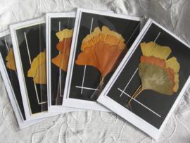 Rouwkaarten met ginkgo bladeren 5 st