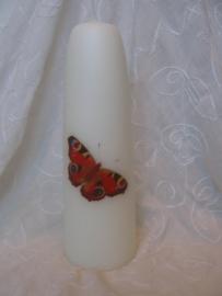 Gedenkkaars Vlinder Dagpauwoog
