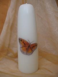 Gedenkkaars  Vlinder