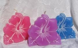 Hibiscusbloem kaars