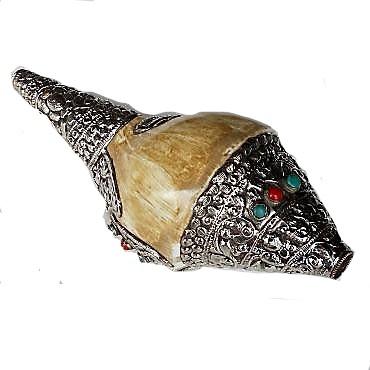 Concho schelp Nepal