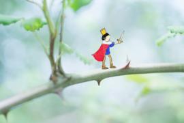 Verderkijker prins