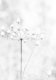 Winter set van 5 ansichtkaarten