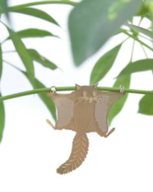 Plant Animal Flying Squirrel