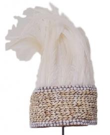 veren hoofd tooi Papua wit op standaard