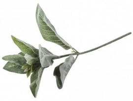 Kunst tak - Leaves plant green branch ovale Leaves powdered - PTMD