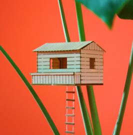 Amazing Plant-house - Plant-shed