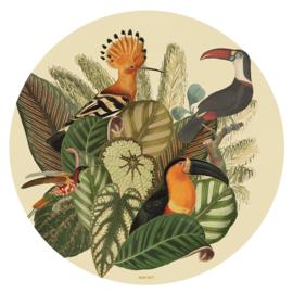 NIN-NIT wall art Tropical Toucans