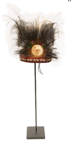 indianen veren tooi - Feather crown