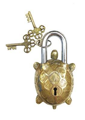 Turtle lock slot - Doing Goods