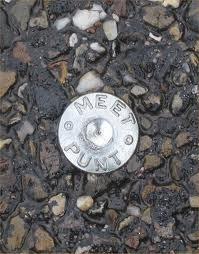 Meetspijkers  ( Meetpunt )Lengte 50mm 100 Stuks per zak