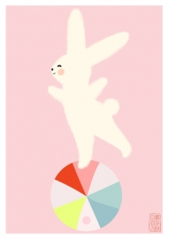 Lapin ball pink