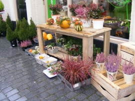 """Steigerhouten tafels op wielen voor Bloemenshop """"Marjanneke"""""""