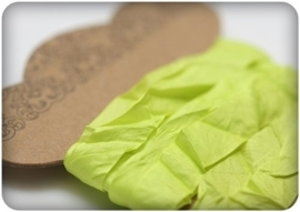 ScrapBerry's Shabby Ribbon Lime 10 mm 1 m (SCB510116)