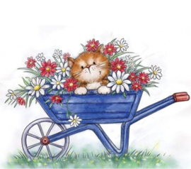Wild Rose Studio`s A7 stamp set Cat in Wheelbarrow CL516