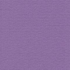 Papicolor - 230946 - Paars - 105 gram