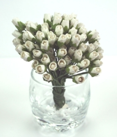 Tiny Rose Buds - White