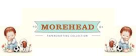 20x diverse soorten knipvellen Morehead