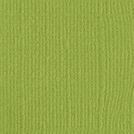 """Bazzill canvas 12x12"""" parakeet"""