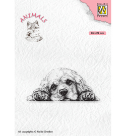 Nellie`s Choice - ANI022 - Animals Spaniel dog