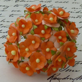 Sweetheart Blossom Flowers - Orange