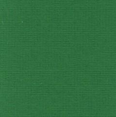 Papicolor - Groen - 105 gram (OP = OP)