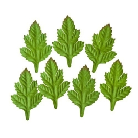 ScrapBerry's Set Of Leaves 7 pcs Shrub (SCB300601)