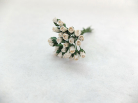 Mini Semi Open Rose Buds - White