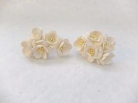 Cherry blossom flowers - White