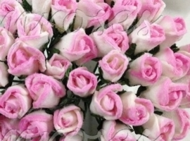 Tiny Rose Buds - Pink Variegated