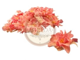 Curly Flowers - Pink Variegated