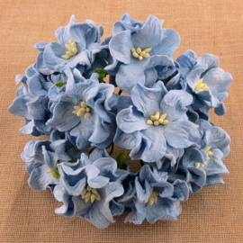 Curly Flowers Double - Baby Blue