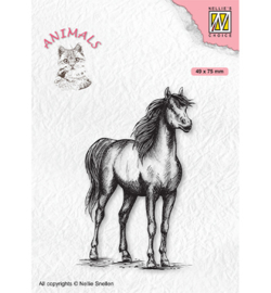 Nellie`s Choice - CANI009 - Animals Horse