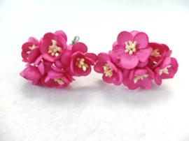 Cherry blossom flowers - Magenta