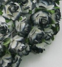 Middle Rose - Black/White