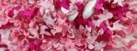 Gekruld Bloem - Mixed Pink